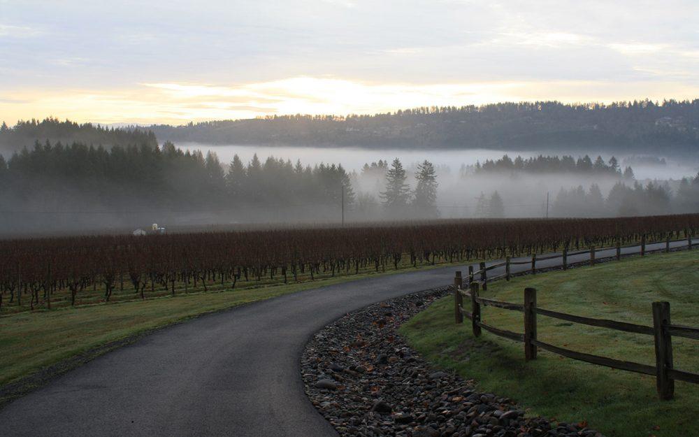 Blakeslee Vineyard Estate Sherwood Oregon